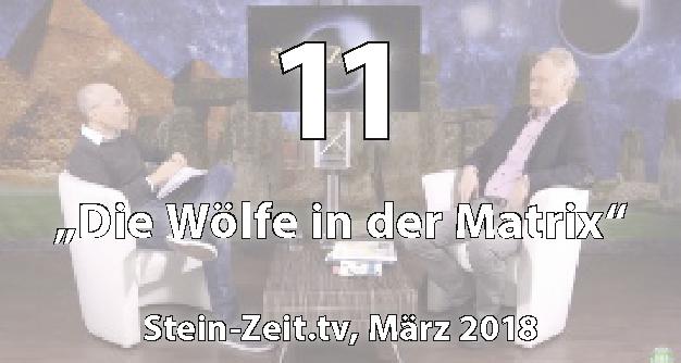 11: Die Wölfe in der Matrix - Matthias Weidner bei Stein-Zeit.tv (März 2018)