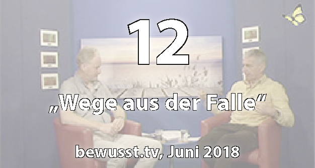 12: Wege aus der Falle - Matthias Weidner bei bewusst.tv (Juni 2018)